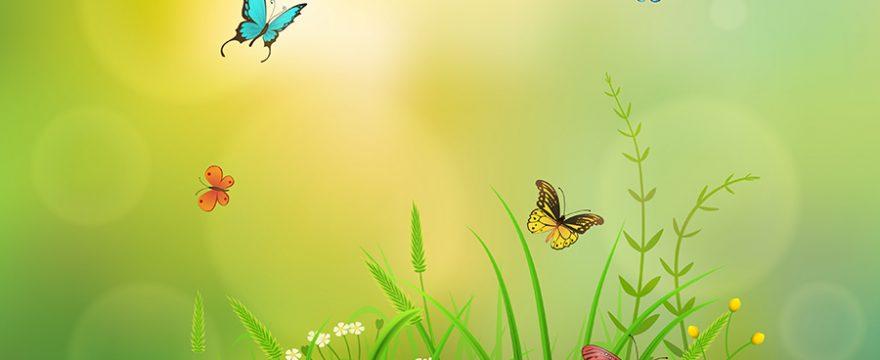 La magia de las Mariposas: folclore y leyendas